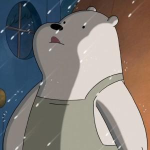 ice bear rain